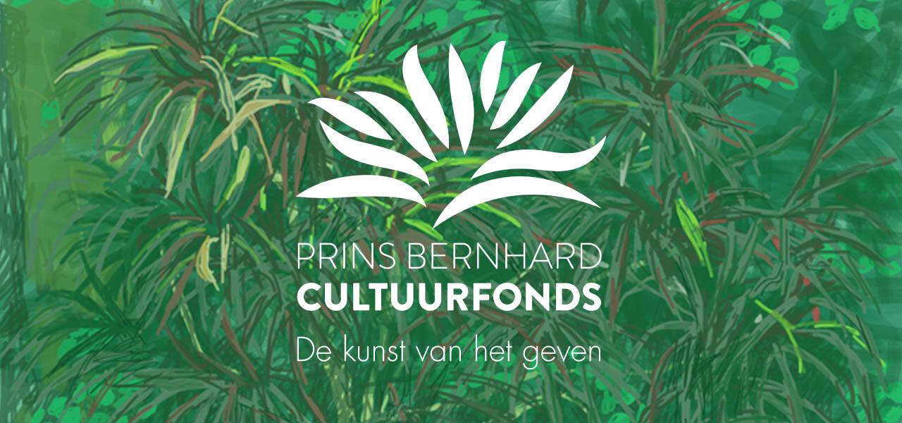 Makers aan het woord: zij ontvingen een bijdrage van het Prins Bernhard Cultuurfonds Zuid-Holland