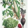 Het Smaakmuseum