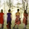 The Stolz Quartet