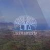 Liber Artista