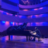 Edward Meijer Pianostemmer