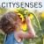 CitySenses