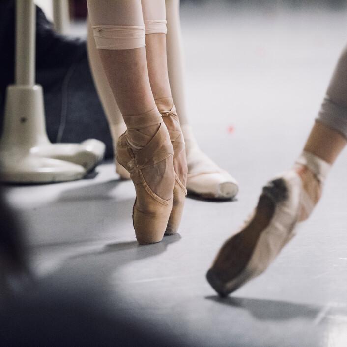 De Junior Company maakte een ballet met donateurs